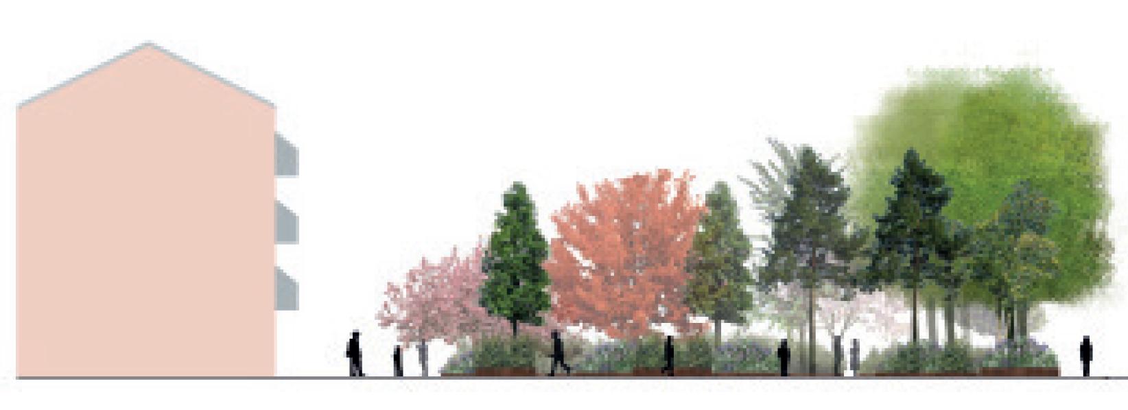 Opstalt træer, plan, Parken i stengade